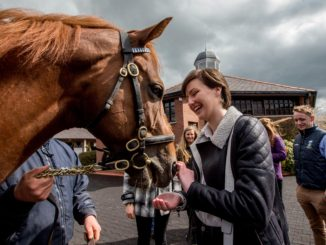 Aoife Costello (DCU Equestrian Club) meets Night of Thunder. Credit: Inpho