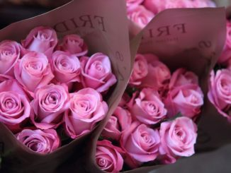 Paper-wrapped-bouquets-of-pink-roses