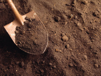 Polluted soil affects our lives more than we even realise. Credit: keepacron beautiful.org © L. Clarke/Corbis