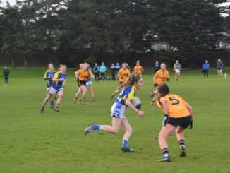 DCU's Leha Caffrey sizes up a tackle in Drumcondra. Credit: Darragh Culhane